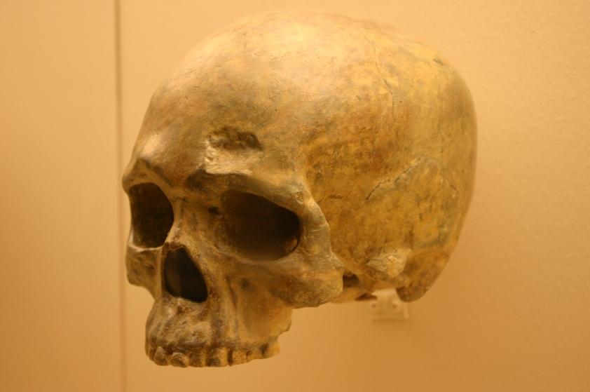 liujiang_cave_skull-a-_homo_sapiens_68000_years_oldwikimedia