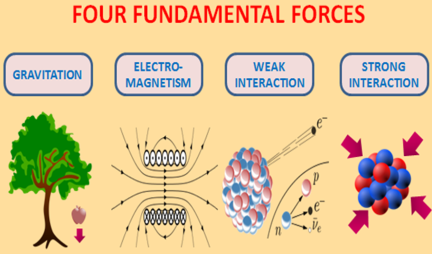 fourfundamentalforces
