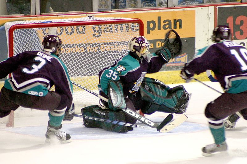 Hockey_goal_cmd_2004